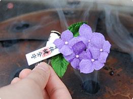引用元:http://www.otorisama.jp/ikiiki-ajisai/